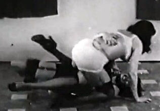 The sharks lagoon